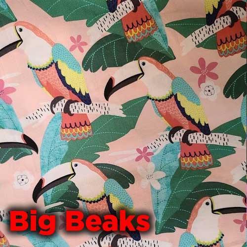 big-beaks