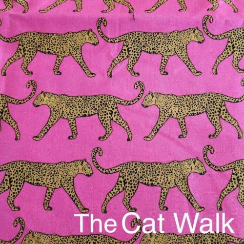 cat walk (1)