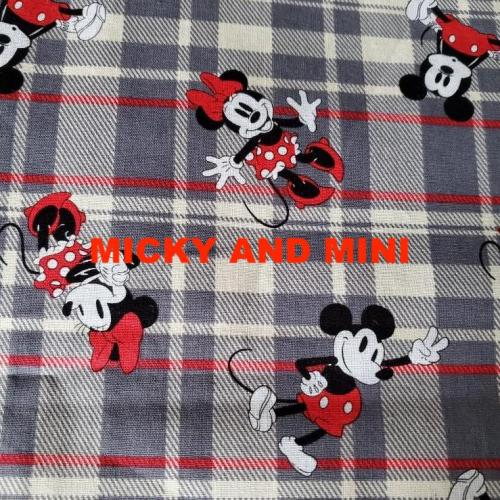 micky and mini